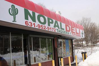 20110302-nopal
