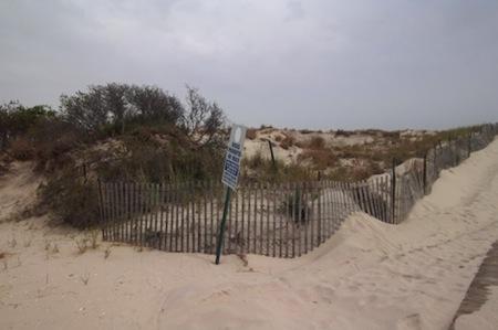 20110623-beach