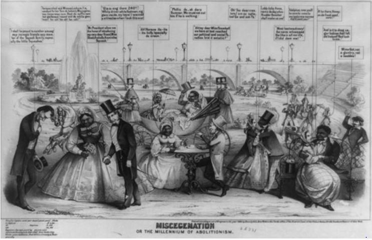 miscegenation-abolition