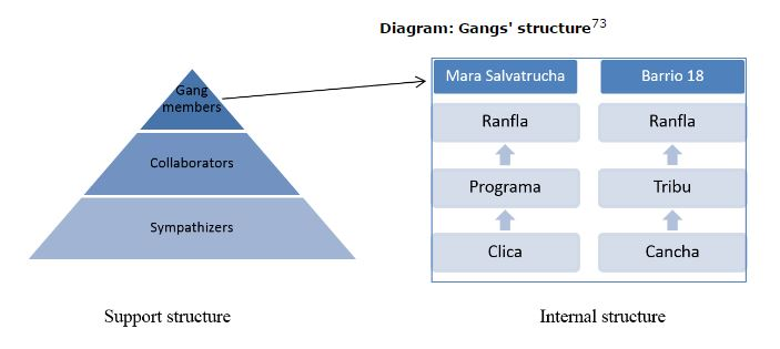 ms-structure